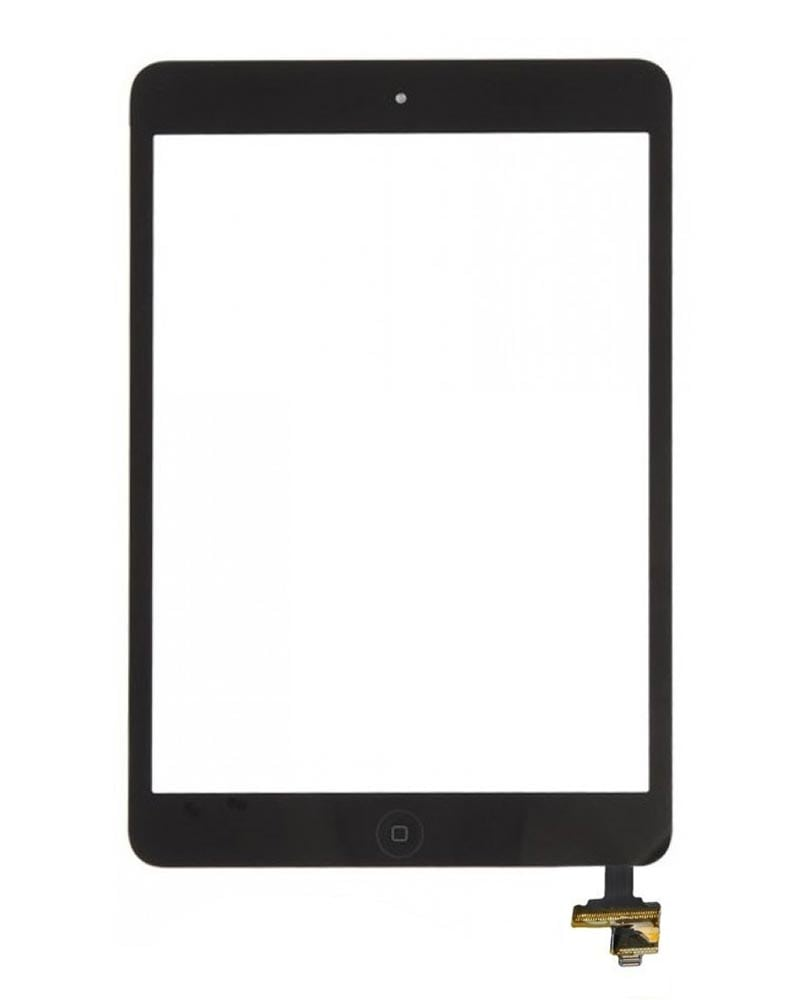 Display, Glas, Digitizer - iPad Mini - Svart